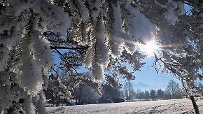 Temperaturen wie im Gefrierschrank: Väterchen Frost übernachtet im Süden