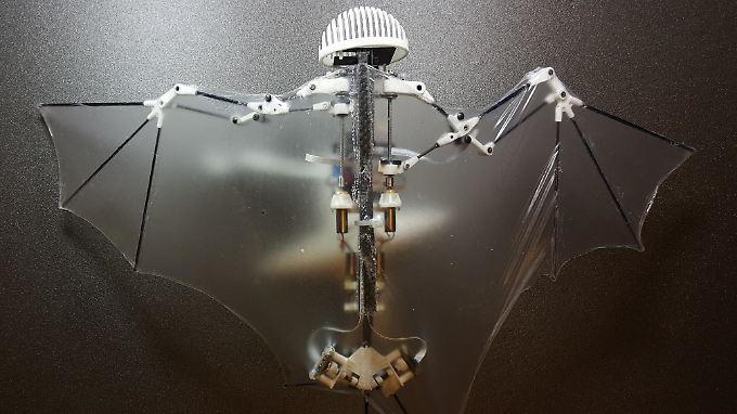 """Ein """"Fledermaus""""-Roboter - seine Oberarme werden unter Verwendung einer Gleitschiene angetrieben."""