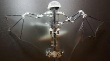 """Wendiger kleiner Flugroboter: """"Bat Bot"""" ist ungefährlich für Menschen"""