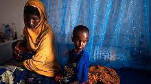 """""""Warnzeichen sind überdeutlich"""": Horn von Afrika steht vor Hungerkatastrophe"""
