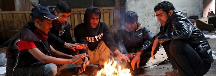 """""""Was sollen wir sonst tun?"""": Flüchtlinge harren in Serbien unter erbärmlichen Bedingungen aus"""