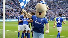 Abstiegssorgen? Statementsieg!: Schalke schlägt Augsburg und die Krise