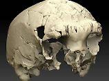 Fundsache, Nr. 1346: Menschenschädel aus Mittlerem Pleistozän