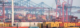Große Lücken bei IT-Sicherheit: So überlisten Schmuggler die Häfen