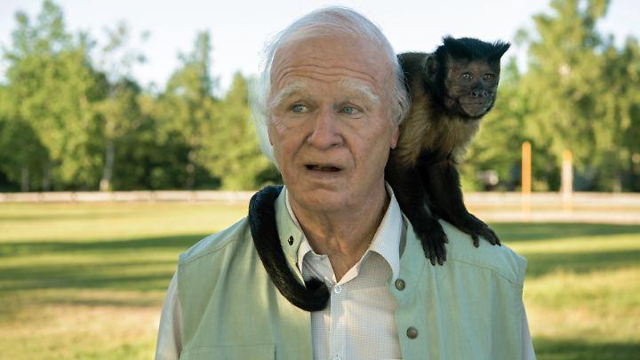 Diesmal ist ein Affe sein ständiger Begleiter: der hunderteinjährige Allan alias Robert Gustafsson.