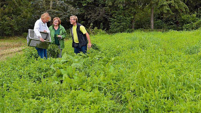 Eine Partnerschaft, mit der sie sich selbst und andere glücklich machen: Frank Buchholz mit seinen Wildkräuter-Lieferanten Petra und Michael Stein.