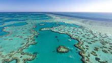 """""""Zu groß, um zu scheitern"""": Was ist das Great Barrier Reef wert?"""