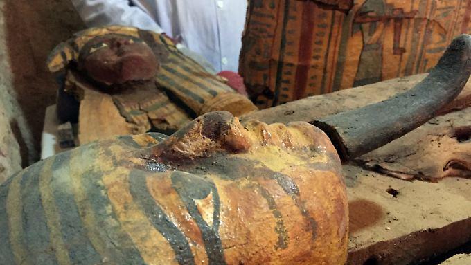 Ein großer Mumien-Fund begeistert die Wissenschaftler.
