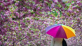 Polarluft und Sonnenschein: Aprilwetter zieht alle Register