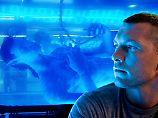 Fünf Jahre, vier Fortsetzungen: James Cameron veröffentlicht Avatar-Termine
