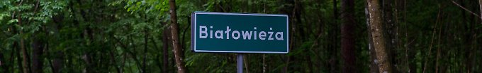 Der Tag: 18:57 Polen fällt uralte Urwaldbäume - Kritik von EU