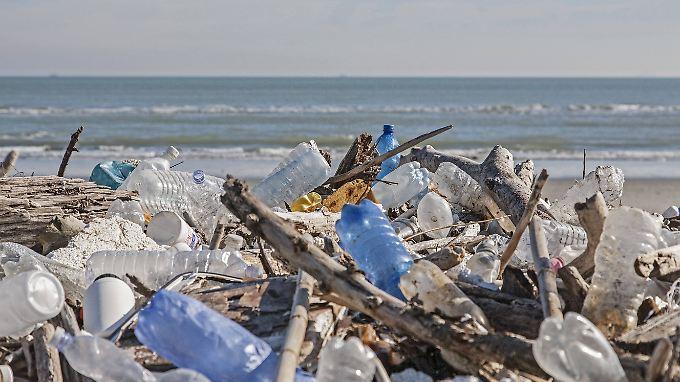 Angeschwemmt an der Adriaküste. Im Wasser wird das Plastik nach und nach in winzige Teile zerrieben.