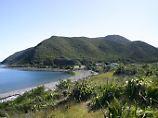 Zeitreise in Neuseeland: Eine Insel, wie James Cook sie sah