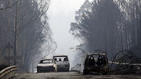 Mindestens 57 Tote: Verheerender Waldbrand wütet in Portugal