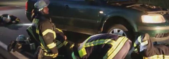 Ungewöhnlicher Polizeieinsatz: Waschbär versteckt sich nach Unfall in Autokarosserie