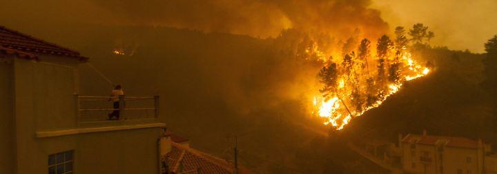 Waldbrände kesseln Dörfer ein: Dutzende Menschen sterben bei Feuerinferno in Portugal