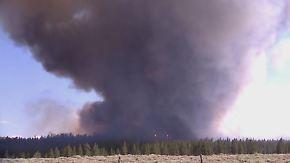 Brände an US-Westküste außer Kontrolle: Buschfeuer wüten in diesem Jahr besonders heftig