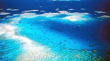 Rettungsplan für Weltnaturerbe: Great Barrier Reef kommt nicht auf Rote Liste
