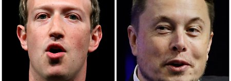 Musk reagiert auf Datenskandal: Tesla und SpaceX löschen Facebook-Seiten