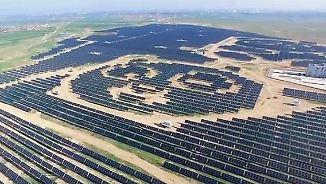 Bärenstarke Solaranlage: Panda-Kraftwerk wirbt für Umweltschutz