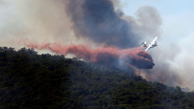 Ökologische Katastrophe: Waldbrände richten in Südeuropa große Schäden an