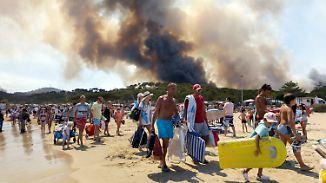 Waldbrände im Urlaubsparadies: Behörden kämpfen an der Côte d'Azur gegen die Flammen
