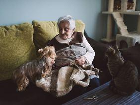 Haustiere sind für viele Menschen eine angenehme Gesellschaft - manchmal sogar die einzige.