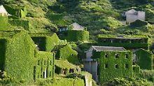 Kontrastprogramm zu Shanghai: Houtouwan ist Chinas grünes Geisterdorf