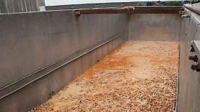 So sieht es aus, wenn Millionen Eier auf einen Schlag vernichtet werden.