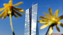 Die EZB will zarten Konjunkturpflänzchen der Eurozone nicht beschädigen.
