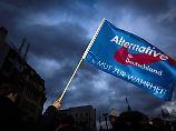 """""""Bemühen uns um Austausch"""": AfD bestreitet Kontakt zu russischem Spion"""