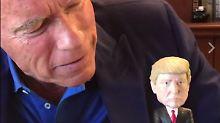 Keine zwei Seiten von Hass: Schwarzenegger gibt Trump Nazi-Nachhilfe
