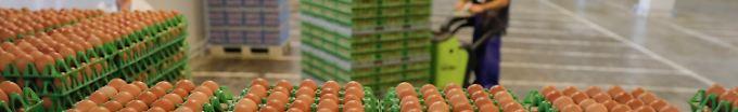 Der Tag: 06:46 Geflügelbranche erwartet Millionenschaden wegen Fipronil