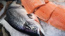 Warentest kostet Fisch: Zuchtlachs macht das Rennen