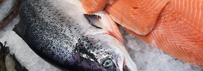 Verbraucher können bei den meisten Lachsen bedenkenlos zugreifen.