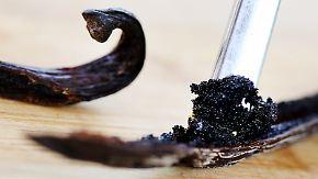 Geringe Ernte, Streiks, Unwetter: Vanille inzwischen teurer als Silber