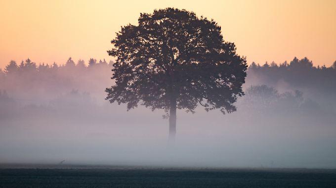 """Regen, Gewitter, Temperatursturz: Tief """"Nepomuk"""" vertreibt den Sommer"""