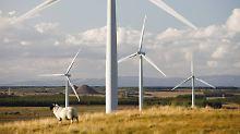Ausländische Investoren zögern: Britischer Windkraft droht Brexit-Flaute