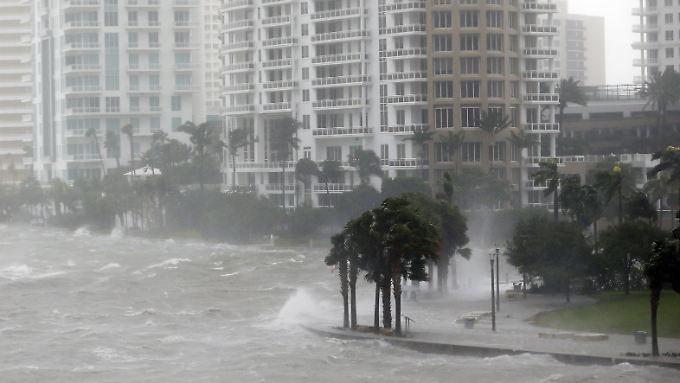 """""""Einfach ein großes Monster"""": Miami steht unter Wasser"""