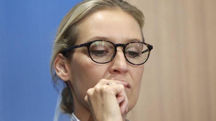 Schwere Vorwürfe gegen Alice Weidel: Sie soll eine Syrerin am Staat vorbei beschäftigt haben.