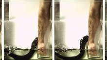 Elektroschock stärker als Taser: So teilen Zitteraale ihre Stromstöße aus