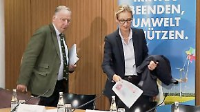 Wirtschaftsprogramm der AfD im Check: Raus aus dem Euro, Obergrenze bei der Leiharbeit