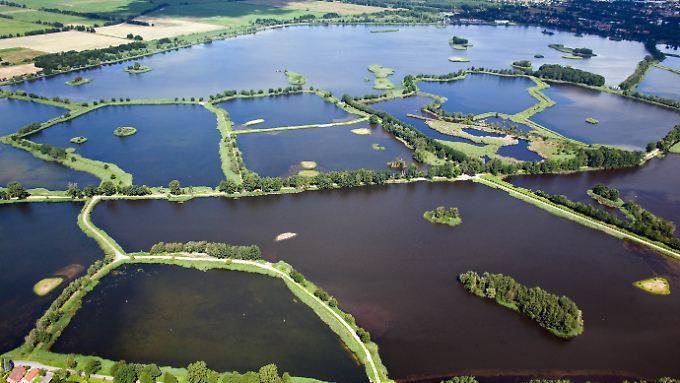 """""""Land der tausend Teiche"""": Blick aus einem Leichtflugzeug auf die markanten Peitzer Fischteiche."""