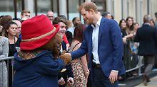 Schwangere Kate in Tanzlaune: Die Royals treffen Paddington Bär