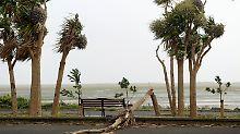 """Weiterzug nach Schottland: Sturm """"Ophelia"""" tötet in Irland drei Menschen"""