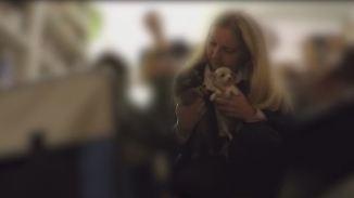 Kranke Welpen aus Osteuropa: Tierschützerin deckt illegalen Hundebaby-Handel auf