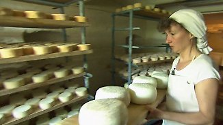 Exportschlager Gouda und Co.: Asien entdeckt deutschen Käse