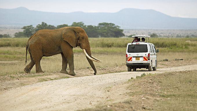 Afrikareisende sollten sich vor allem in den Hochrisikobereichen schützen.