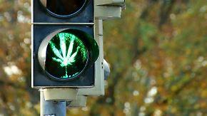 """Dobrindt: """"Cannabis ist keine Lösung"""": FDP und Grüne drängen auf Hanf-Freigabe"""