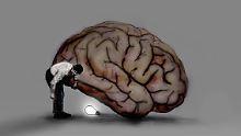 Intelligenz im Gehirn sichtbar: Kluge Menschen sind anders vernetzt